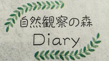 神奈川新聞にコラムを掲載していただいた。