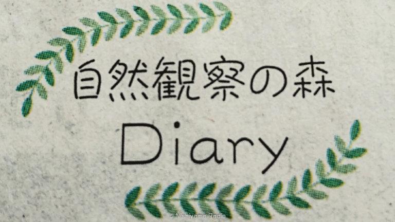 自然観察の森Diary