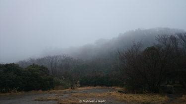 2015年3月の季節の森を歩こう【ハンミョウの会ガイドウォーク】