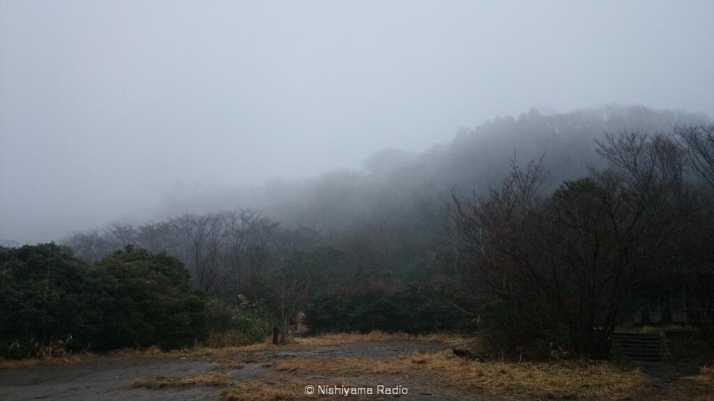 霧の立ち込める横浜自然観察の森