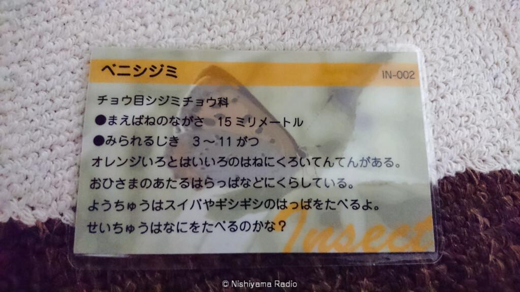 レヂヲ謹製生き物カード裏面