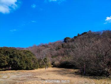 2021年2月の横浜自然観察の森