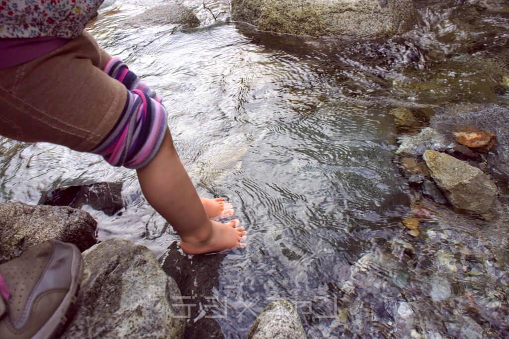ウェルキャンプ西丹沢で川遊び